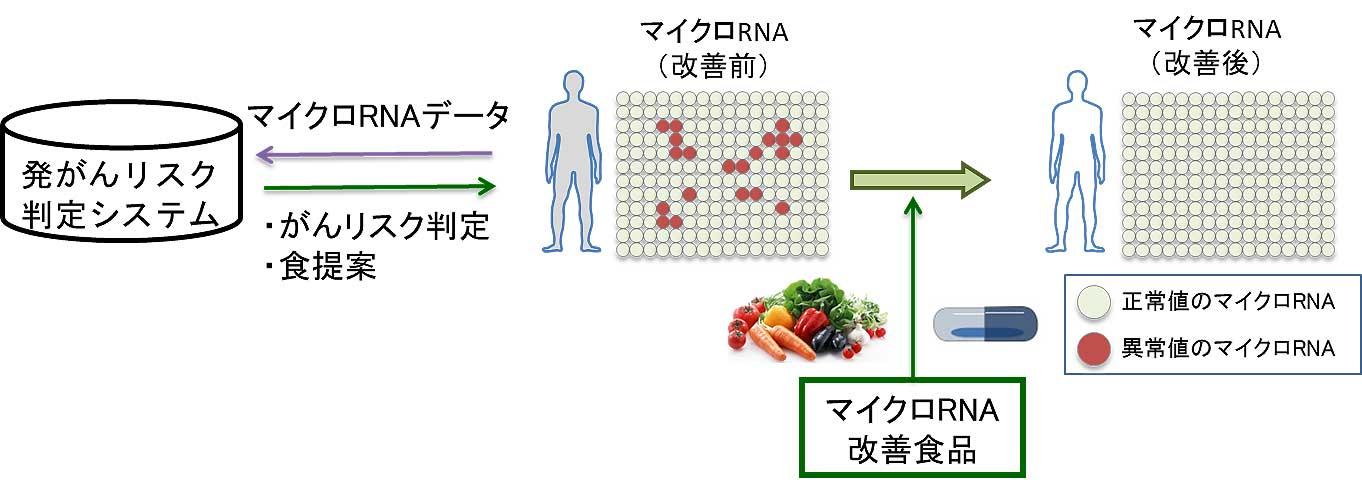 血中成分で発がんリスク判定 根拠も説明できるAI開発へ キユーピー - 食品新聞社