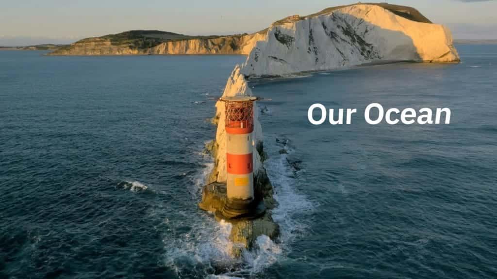 AIが「船長」に。IBMが変革する、海洋研究のミライ | 世界のソーシャルグッドなアイデアマガジン | IDEAS FOR GOOD