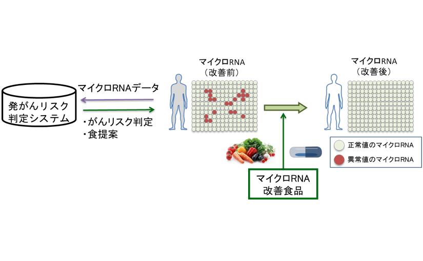 キユーピー AI活用した食生活の提案でがん予防の実現を目指す | Ledge.ai